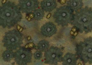 Taktyczna mapa lasu
